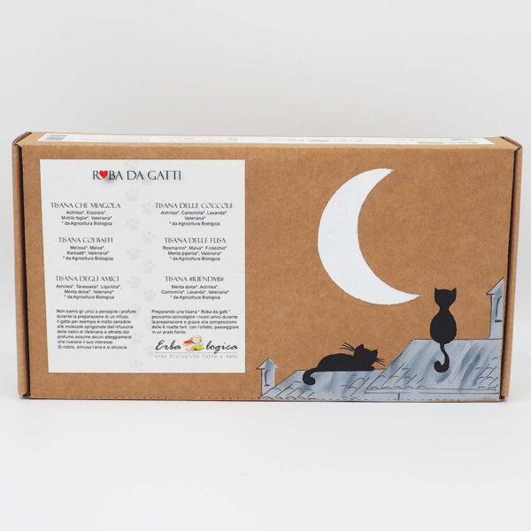 roba da gatti scatola degustazione